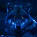 リリーの人狼戦記