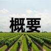【フランス】シャンパーニュ 概要・産地