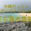 沖縄と言ったらやっぱり美ら海水族館?!
