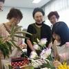 木蓮さんの教室訪問と肌理の勾配