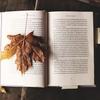 新卒1年目になる前に絶対に読んでおきたい本5選