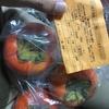 今年は柿が豊作です♫