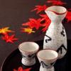日本酒で化粧水を作る??余ったりもらった日本酒できれいになれる!!
