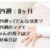 【妊娠29週:8ヶ月】妊娠29週ってどんな状態?|妊娠29週のママと赤ちゃんの様子は?