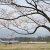 春のうららの松本空港