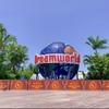 【コアラ抱っこ体験】オーストラリア最大のテーマパーク【ドリームワールド】が最高に楽しすぎた