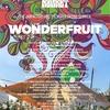 The Knack Market in Wonderfruit