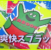 【ボードゲームレビュー】 夏を感じたい『ザッブーン!(ZABOON!)』
