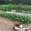 小松菜の収穫が終了し、人参と夏大根の床つくり