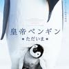 【iTunes Store】「皇帝ペンギン ただいま (字幕/吹替)(2018)」今週の映画