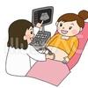 オランダでの妊婦検診スケジュール