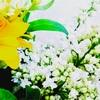 花を愛するように、ひとを愛したい。