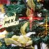 【大学生向け】彼女へ贈るクリスマスプレゼント5選!