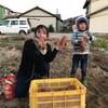 最後の芋掘り、今季完了です。良かった。