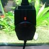 信頼できる水槽のヒーター!おすすめはGEXのサーモスタット一体型|水温調節可