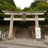 京都 青モミジの大原野神社
