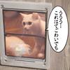 猫扉、付けるならどれがいい?私のおススメはコレ。