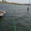 ハゼ釣り:江戸川放水路【我が子に続け!繰り広げられた戦いがついに終わる。】