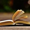 文章力強化!初心者webライターにおすすめの本を3冊(&他1冊)紹介します