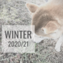 《log》2020/21冬期休暇の備忘録~家での暮らし/帰省/初詣etc...~