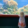 【水族館】日本最初の水族館?!子連れにおすすめの須磨海浜水族園に行こう!