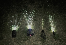 格安LEDライトの光をキャンプ目線で比較。アウトドアで夜を楽しむ!