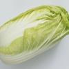 白菜はお鍋で食べるべき?カリウムの特徴【夜勤の筆者が健康を気遣う】