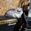 猫好きおとめんブログ