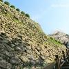 延岡城跡🏯千人殺しの石垣と若山牧水歌碑に桜模様