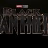 【考察】『ブラックパンサー(原題:BLACK PANTHER)』【予想】