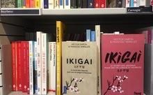 「IKIGAI(生きがい)」探し!ヨーロッパ中でひそかに流行⁈