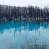 寒々とした青い池へ