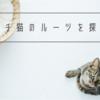 ビビリなウチ猫のルーツを探るお話【北海道】