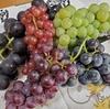 信州から美味しいブドウが届く