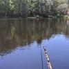感嘆、へらぶな釣りのインスタントうどん。