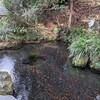 明神池名水公園(熊本県南阿蘇村)