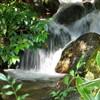 Le flux de la rivière est comme le flux de la vie.