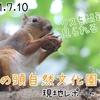 【レポ#26】都会の癒しスポット!井の頭自然文化園現地レポート(2021/7/10)【前編】