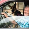 PTSDに苦しむ元米兵のため、セラピー犬が活躍