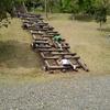 無料で子供と遊べる大きな自然公園!桂川ウェルネスパーク