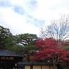 紅葉最適時期の京都翠嵐、ポイント予約できる日が更新されました。