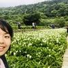 台湾にある陽明山で自然を満喫!なりゆきで行った竹子湖ではとてもキレイな景色が待っていた