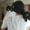 今日の黒猫モモ&白黒猫ナナの動画ー760