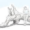 U-NEXT発掘ホラー10選(2017年6月現在)