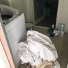 カーテン・・残りを洗い・・うっとりしてます