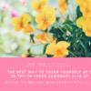 日々、偉人の名言を、お花写真と一緒に癒しをインスタ投稿
