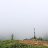 高原植物と草津白根山と重たさと(2017年8月12日)