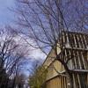 古本市と春の訪れ。