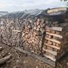 #薪の保管方法