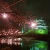 高田公園のお花見に行くとナゼか毎年食べたくなるアレ(*^▽^*)